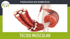 Fisiologia do Exercício - Tecido Muscular