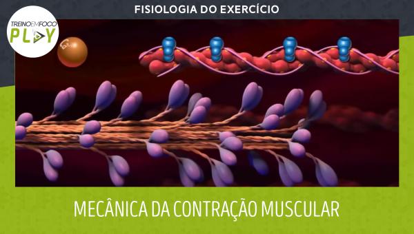 Fisiologia do Exercício - Mecânica da Contração Muscular