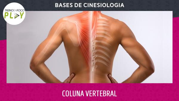 Bases de Cinesiologia - Coluna Vertebral
