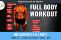 Metodologia de Treino - Treinamento Full Body