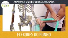 Anatomia e Cinesiologia - Flexores do Punho