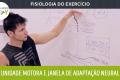 Fisiologia do Exercício - Unidade motora e janela de adaptação neural