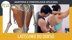 Anatomia e Cinesiologia - Latíssimo do Dorso