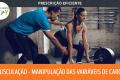 Prescrição Eficiente - Musculação - Manipulação das variáveis de carga