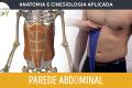 Anatomia e Cinesiologia - Parede Abdominal