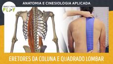 Anatomia e Cinesiologia - Eretores da Coluna e Quadrado lombar